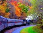 Цветной Поезд